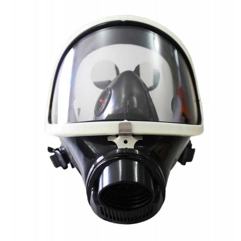 Mascara Panorâmica ( facial peça inteira)